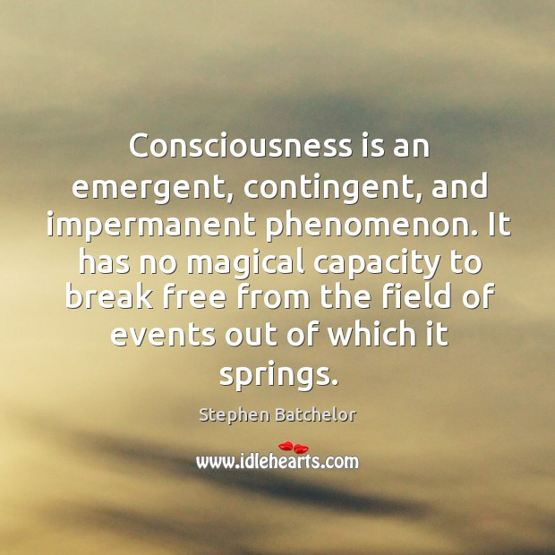 Consciousness is an emergent, contingent, and impermanent phenomenon. It has no magical Image