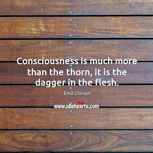 Consciousness is much more than the thorn, it is the dagger in the flesh. Emil Cioran Picture Quote