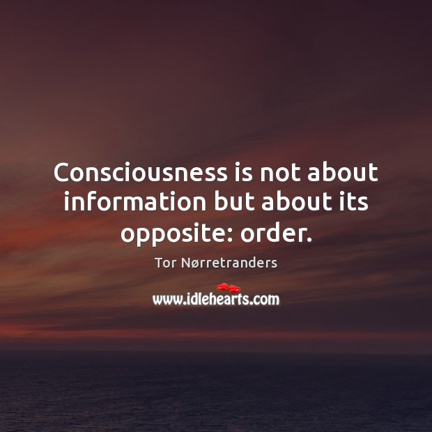 Consciousness is not about information but about its opposite: order. Image