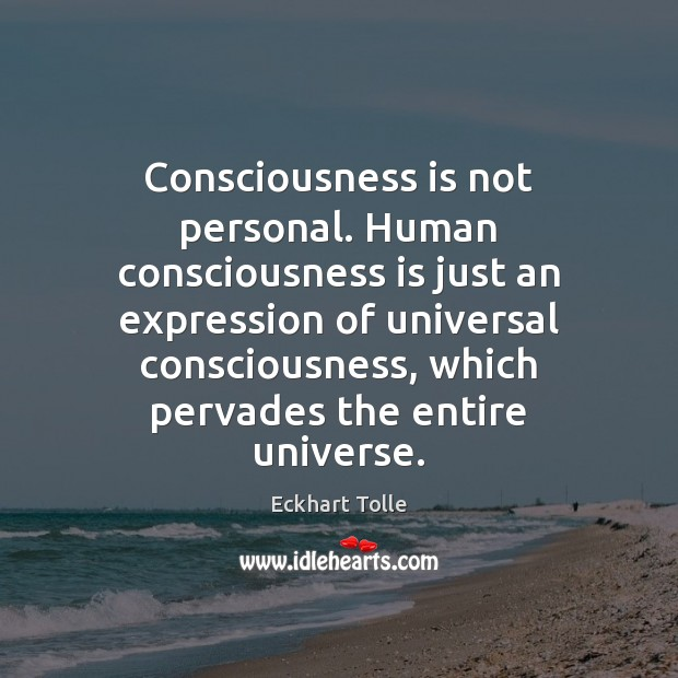 Consciousness is not personal. Human consciousness is just an expression of universal Image