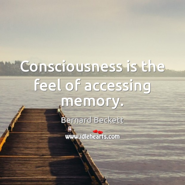 Consciousness is the feel of accessing memory. Image