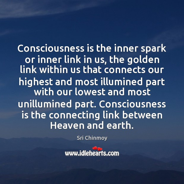 Consciousness is the inner spark or inner link in us, the golden Sri Chinmoy Picture Quote