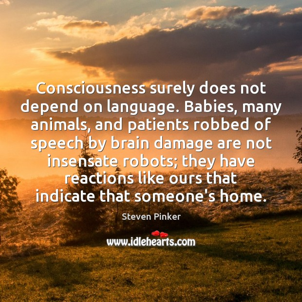 Consciousness surely does not depend on language. Babies, many animals, and patients Steven Pinker Picture Quote