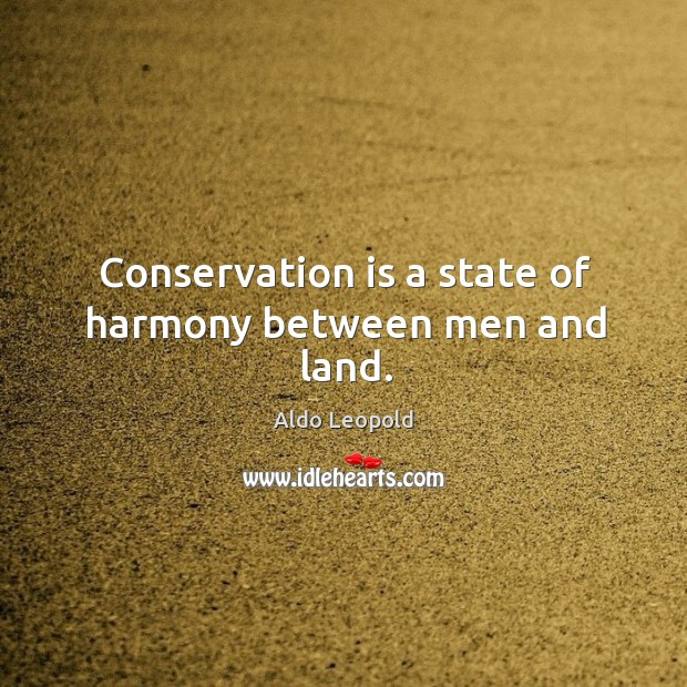 Conservation is a state of harmony between men and land. Image
