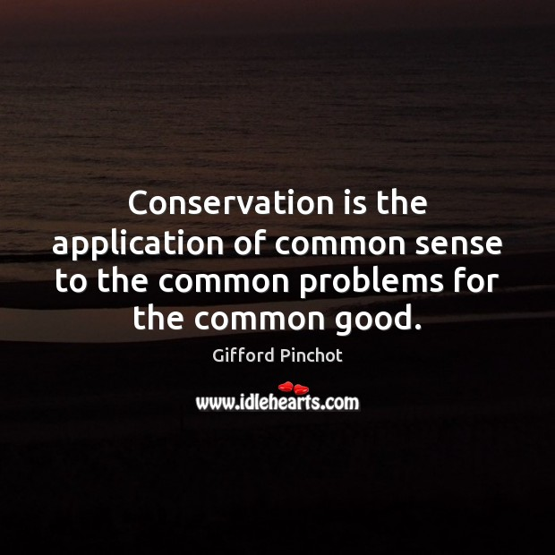 Conservation is the application of common sense to the common problems for Gifford Pinchot Picture Quote