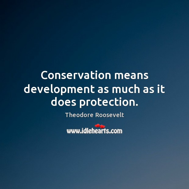 Image, Conservation means development as much as it does protection.