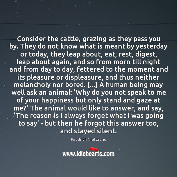 Consider the cattle, grazing as they pass you by. They do not Friedrich Nietzsche Picture Quote
