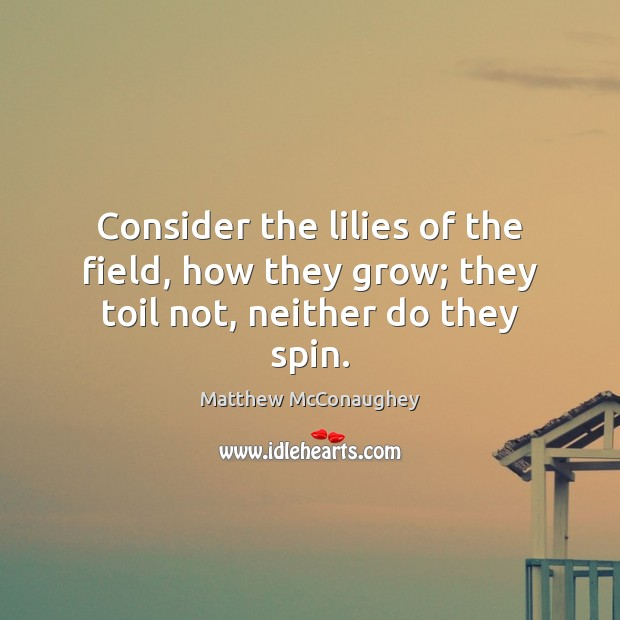 Image, Consider the lilies of the field, how they grow; they toil not, neither do they spin.