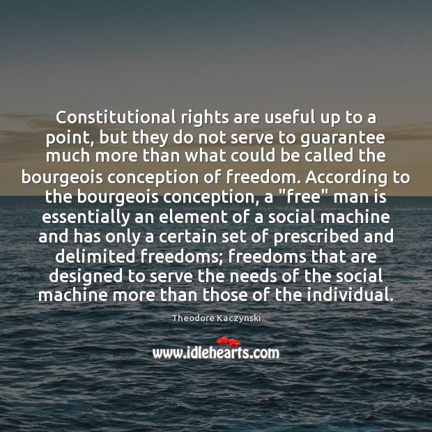 Constitutional rights are useful up to a point, but they do not Image