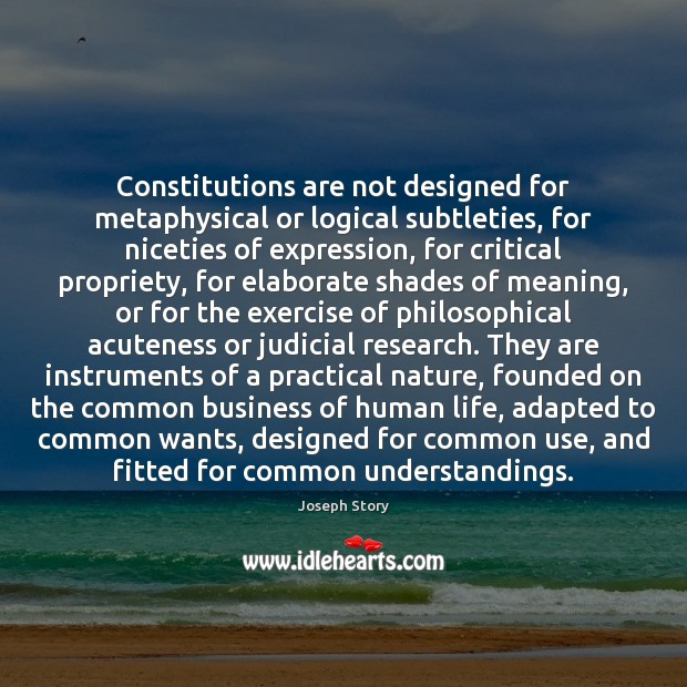 Constitutions are not designed for metaphysical or logical subtleties, for niceties of Image