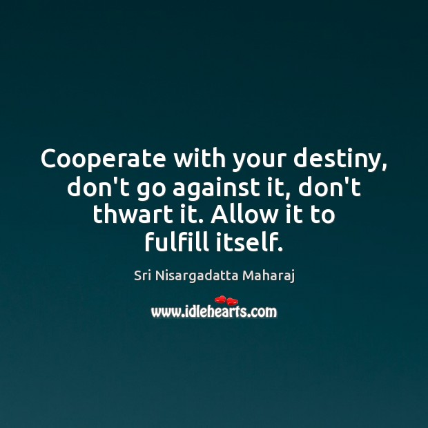 Cooperate with your destiny, don't go against it, don't thwart it. Allow Sri Nisargadatta Maharaj Picture Quote