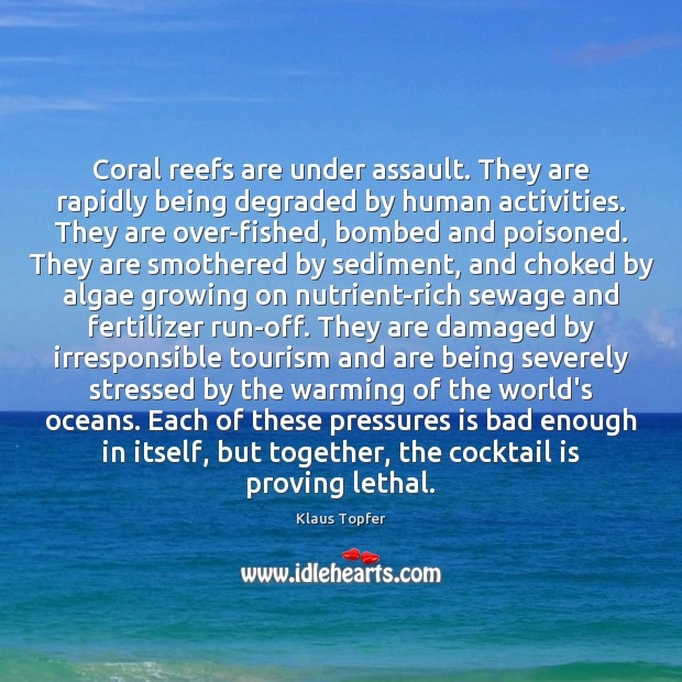Image, Coral reefs are under assault. They are rapidly being degraded by human