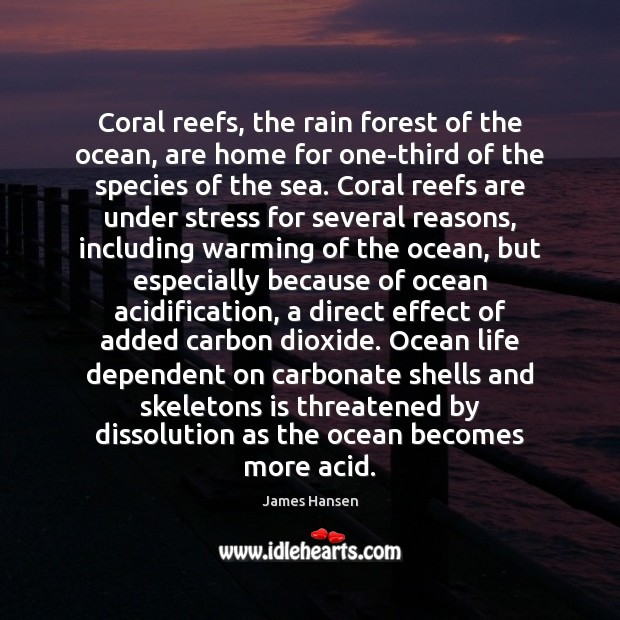 Coral reefs, the rain forest of the ocean, are home for one-third James Hansen Picture Quote