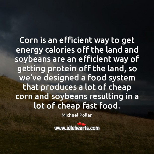 Corn is an efficient way to get energy calories off the land Michael Pollan Picture Quote