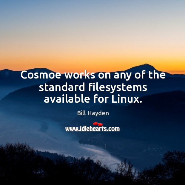 Cosmoe works on any of the standard filesystems available for linux. Image
