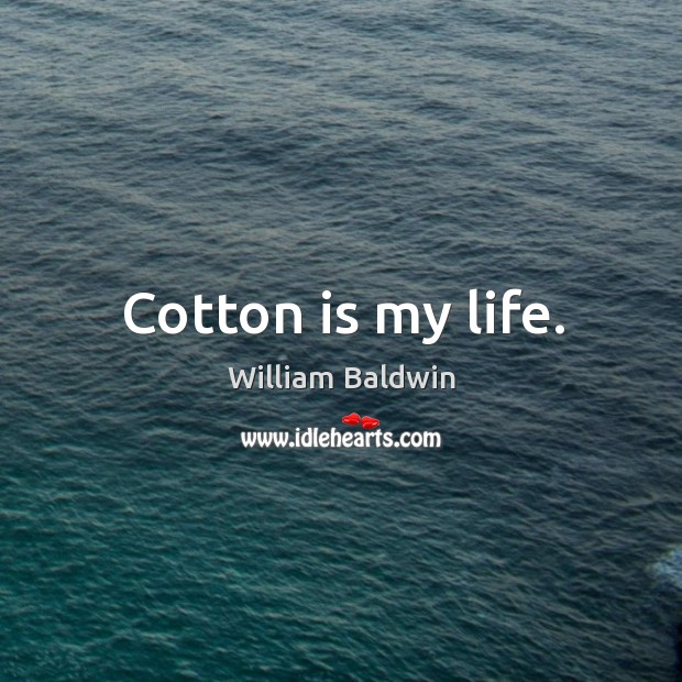 Cotton is my life. William Baldwin Picture Quote