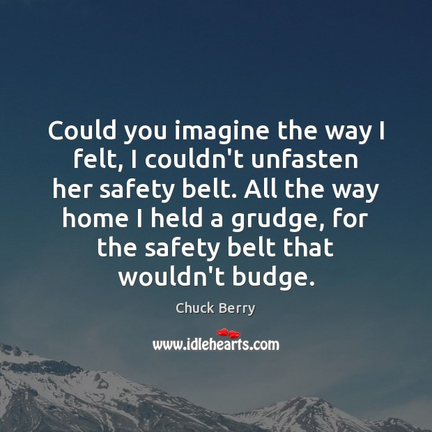 Could you imagine the way I felt, I couldn't unfasten her safety Grudge Quotes Image