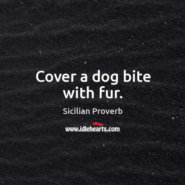 Image, Cover a dog bite with fur.