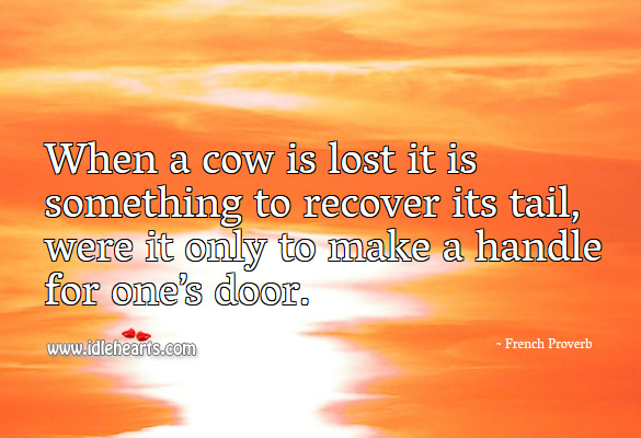 Image, When a cow is lost it is something to recover its tail, were it only to make a handle for one's door.
