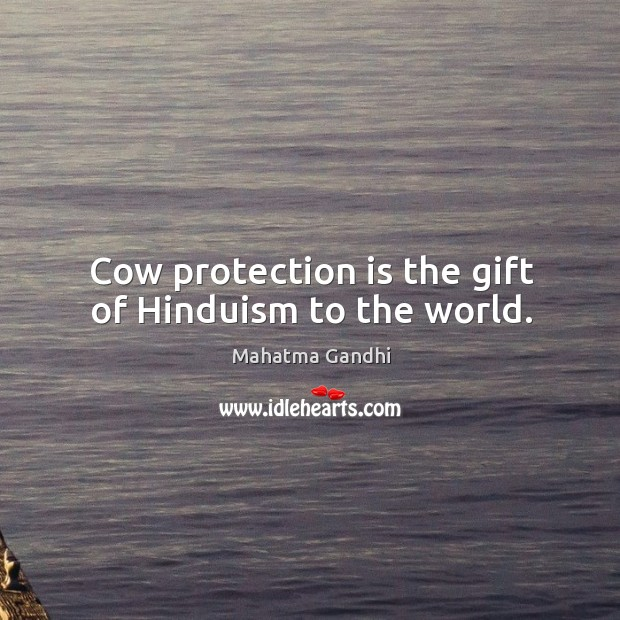 Image, Cow protection is the gift of Hinduism to the world.