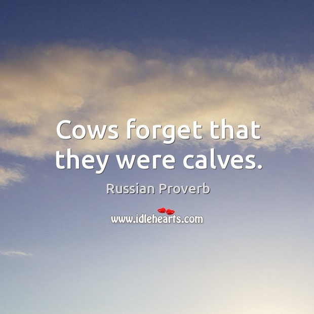 Cows forget that they were calves. Russian Proverbs Image