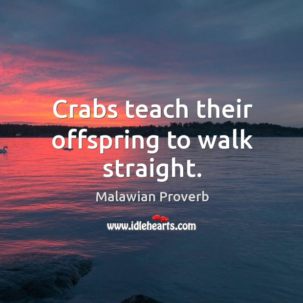 Crabs teach their offspring to walk straight. Malawian Proverbs Image