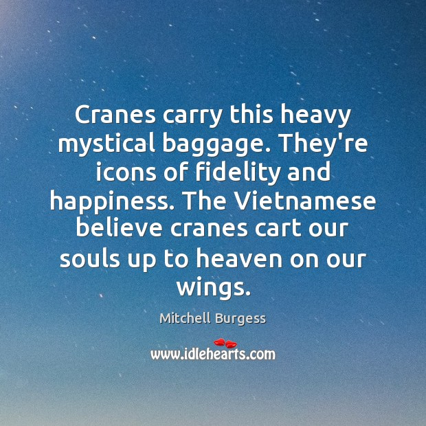 Cranes carry this heavy mystical baggage. They're icons of fidelity and happiness. Image