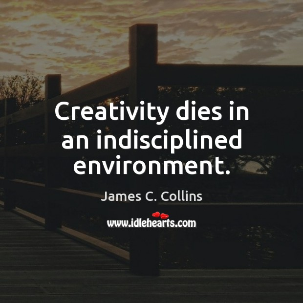 Creativity dies in an indisciplined environment. James C. Collins Picture Quote