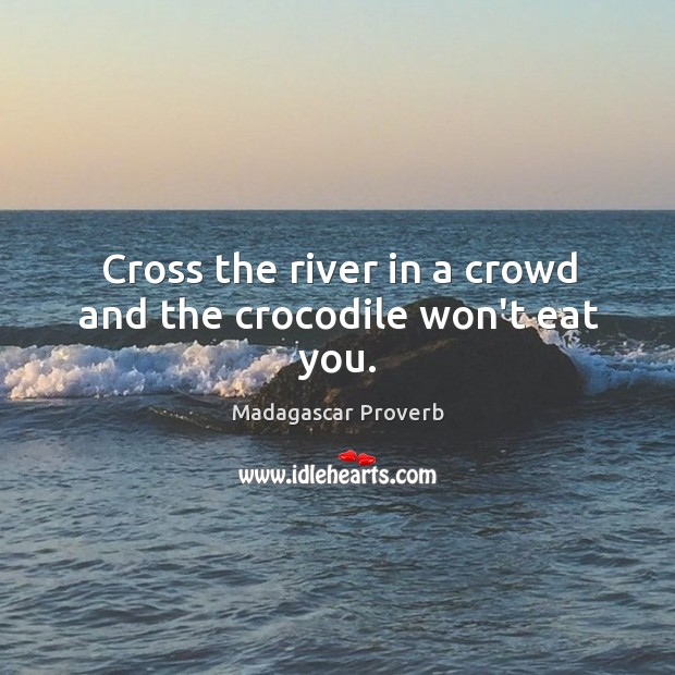 Cross the river in a crowd and the crocodile won't eat you. Madagascar Proverbs Image