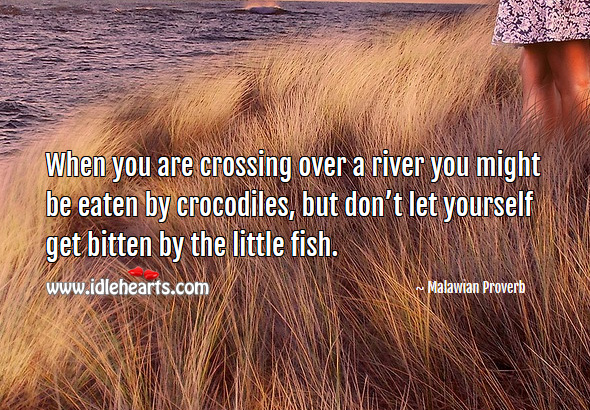 When you are crossing over a river you might be eaten by crocodiles, but don't let yourself get bitten by the little fish. Malawian Proverbs Image