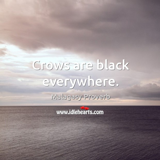 Crows are black everywhere. Malagasy Proverbs Image