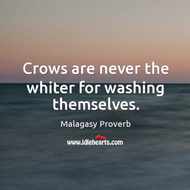 Crows are never the whiter for washing themselves. Malagasy Proverbs Image