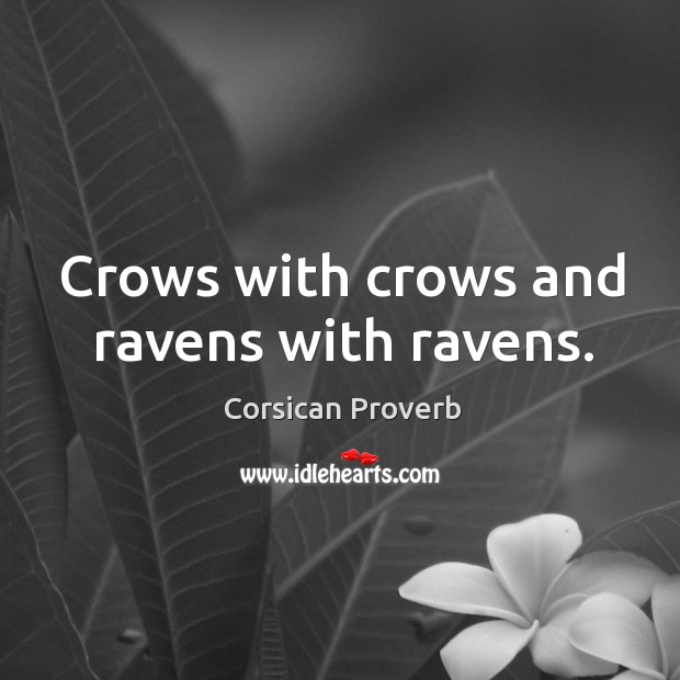 Crows with crows and ravens with ravens. Image