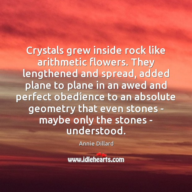Image, Crystals grew inside rock like arithmetic flowers. They lengthened and spread, added