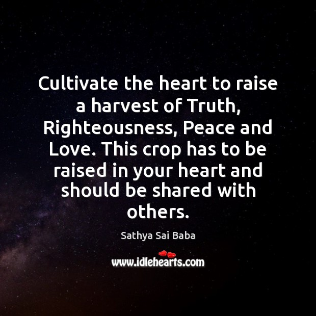 Cultivate the heart to raise a harvest of Truth, Righteousness, Peace and Sathya Sai Baba Picture Quote