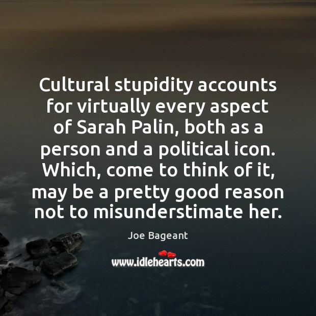 Cultural stupidity accounts for virtually every aspect of Sarah Palin, both as Image