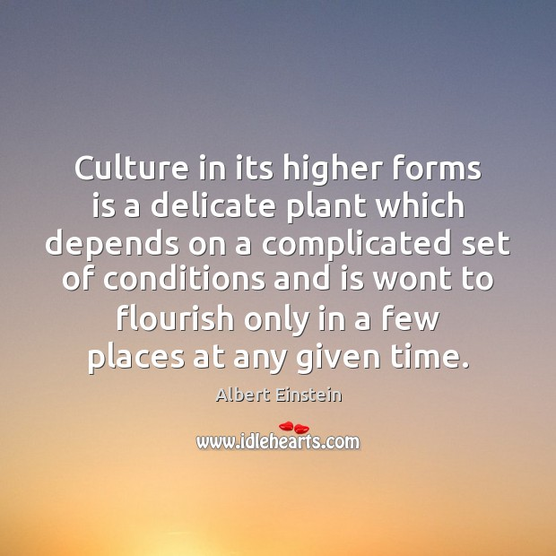 Image, Culture in its higher forms is a delicate plant which depends on