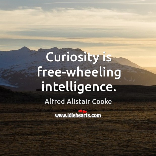 Image, Curiosity is free-wheeling intelligence.