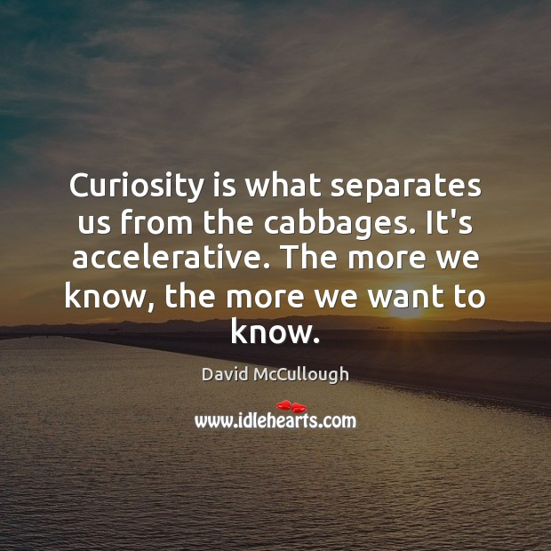 Image, Curiosity is what separates us from the cabbages. It's accelerative. The more