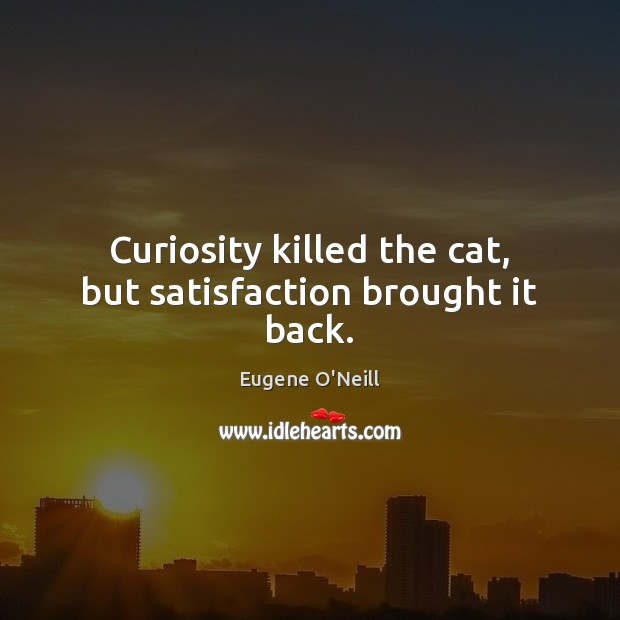 Curiosity killed the cat, but satisfaction brought it back. Image