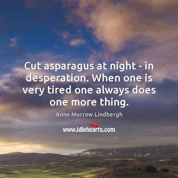 Cut asparagus at night – in desperation. When one is very tired Image