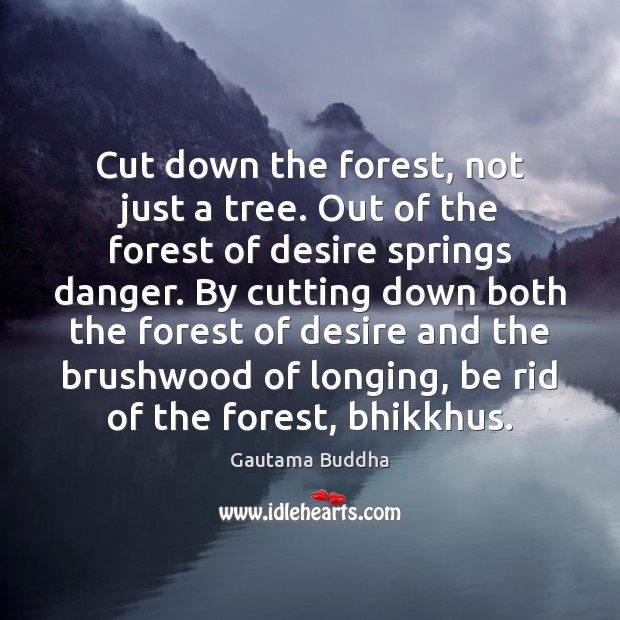 Cut down the forest, not just a tree. Out of the forest Image