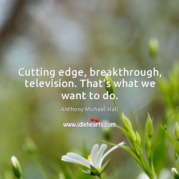 Cutting edge, breakthrough, television. That's what we want to do. Anthony Michael Hall Picture Quote