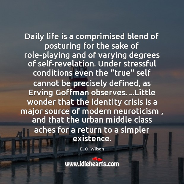 Daily life is a comprimised blend of posturing for the sake of Image