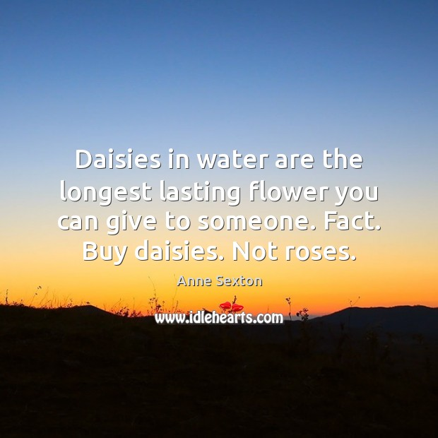 Daisies in water are the longest lasting flower you can give to Anne Sexton Picture Quote
