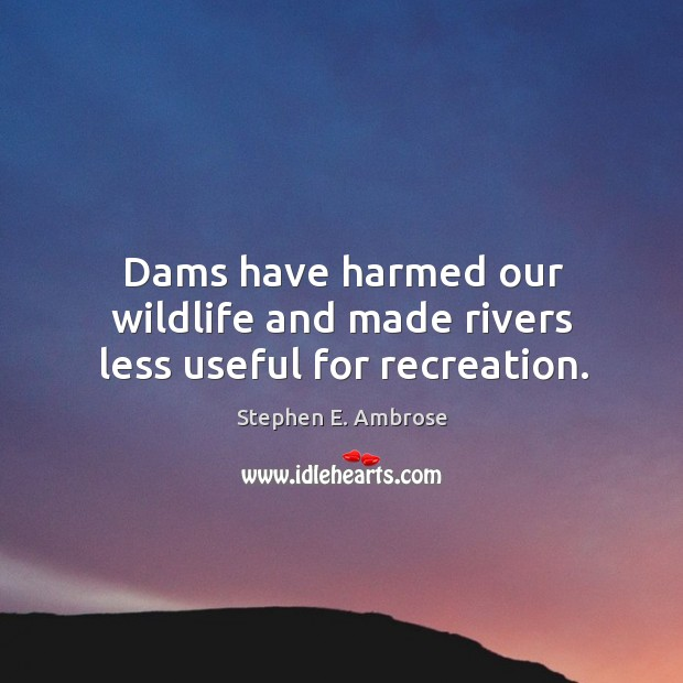 Dams have harmed our wildlife and made rivers less useful for recreation. Stephen E. Ambrose Picture Quote