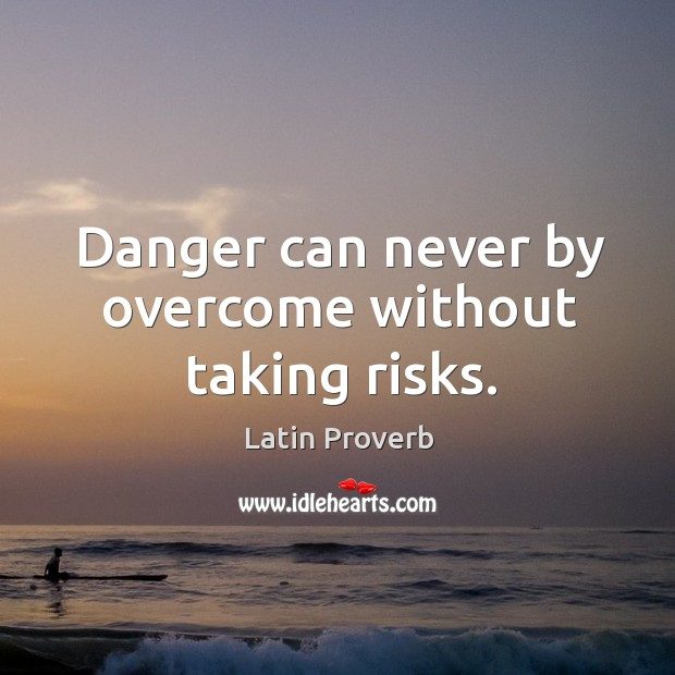 Image, Danger can never by overcome without taking risks.