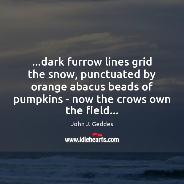 Image, …dark furrow lines grid the snow, punctuated by orange abacus beads of