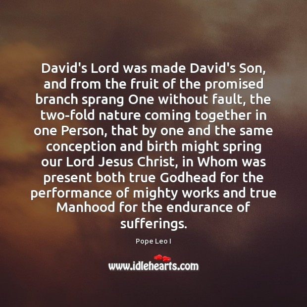 David's Lord was made David's Son, and from the fruit of the Image