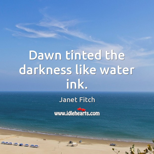 Dawn tinted the darkness like water ink. Janet Fitch Picture Quote
